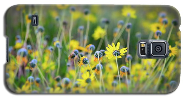 Galaxy S5 Case featuring the photograph Yellow Flowers by Kelly Wade