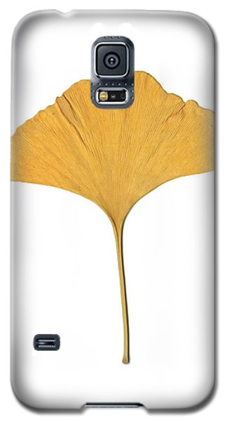 Yellow Ginkgo Leaf Galaxy S5 Case