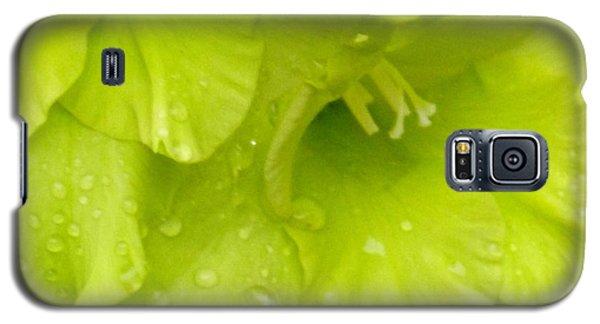 Yellow Gladiola Refreshed Galaxy S5 Case