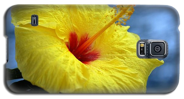 Galaxy S5 Case featuring the photograph Yellow Hibiscus by Debbie Karnes