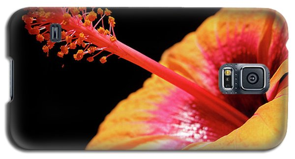 Galaxy S5 Case featuring the photograph Yellow Hibiscus by Marie Hicks