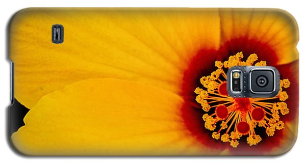 Galaxy S5 Case featuring the photograph Yellow Hibiscus Squared by TK Goforth