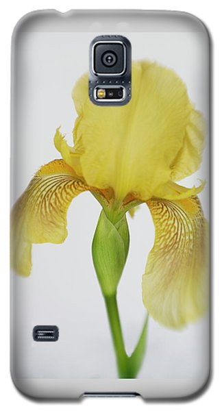 Galaxy S5 Case featuring the photograph Yellow Iris A Symbol Of Passion by David and Carol Kelly