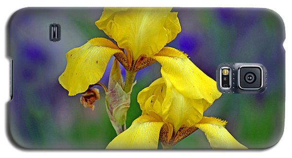 Yellow Iris Galaxy S5 Case by Rodney Campbell