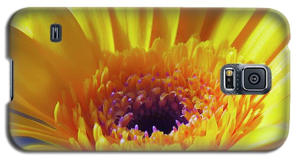 Yellow Joy And Inspiration Galaxy S5 Case
