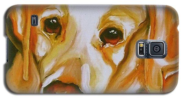 Yellow Lab Amazing Grace Galaxy S5 Case