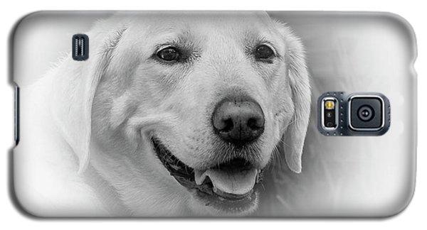 Yellow Labrador Galaxy S5 Case