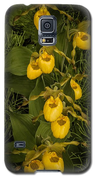 Yellow Lady Slippers Galaxy S5 Case