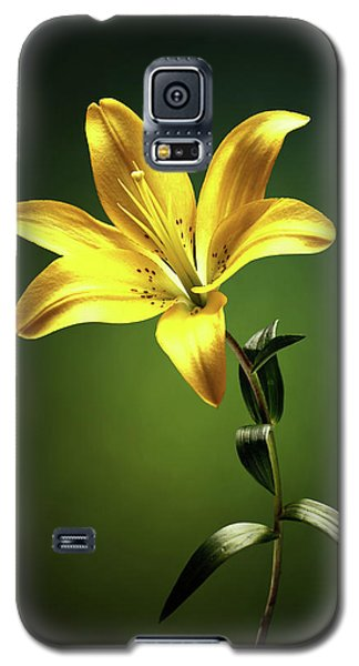 Lily Galaxy S5 Case - Yellow Lilly With Stem by Johan Swanepoel