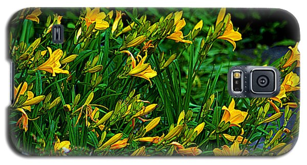 Galaxy S5 Case featuring the photograph Yellow Lily Flowers by Susanne Van Hulst