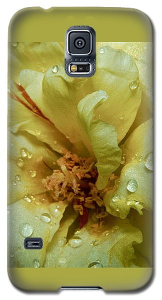 Yellow Moss Rose 1 Galaxy S5 Case