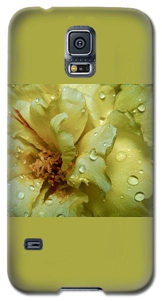 Galaxy S5 Case featuring the photograph Yellow Moss Rose 1 by Karen Musick