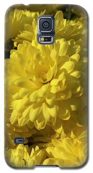 Yellow Mums Galaxy S5 Case