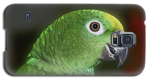 Galaxy S5 Case featuring the photograph Yellow Naped Amazon Parrot by Smilin Eyes  Treasures