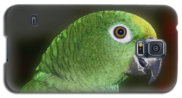 Yellow Naped Amazon Parrot Galaxy S5 Case