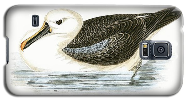 Yellow Nosed Albatross Galaxy S5 Case