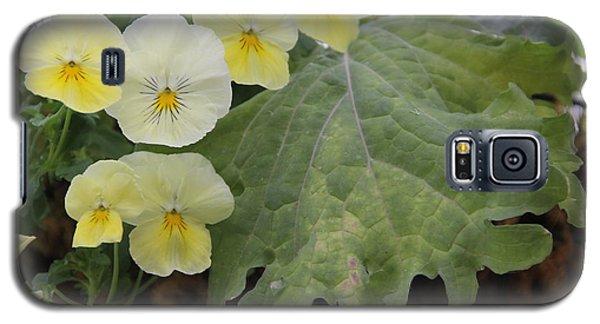 Yellow Pansies Galaxy S5 Case