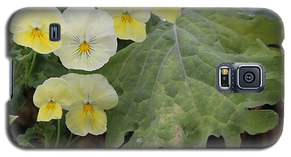 Yellow Pansies Galaxy S5 Case
