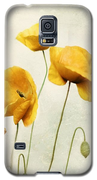 Galaxy S5 Case featuring the photograph Yellow Poppies - Square Version by Amy Tyler