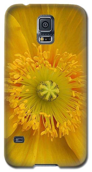 Yellow Poppy Flower Center Galaxy S5 Case
