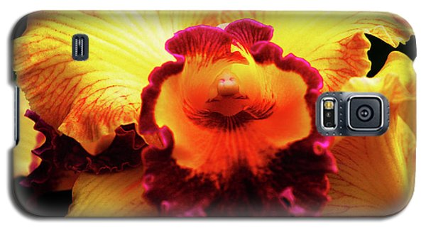 Yellow-purple Orchid Galaxy S5 Case