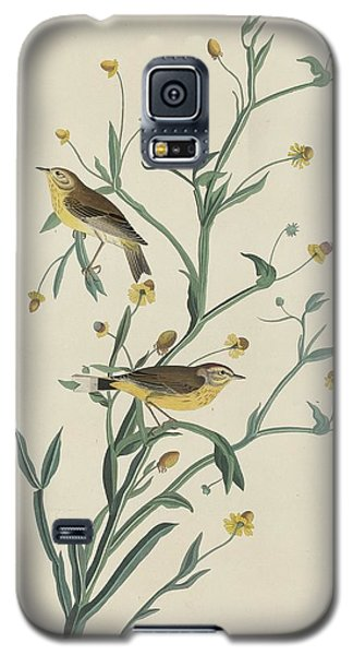 Yellow Red-poll Warbler Galaxy S5 Case