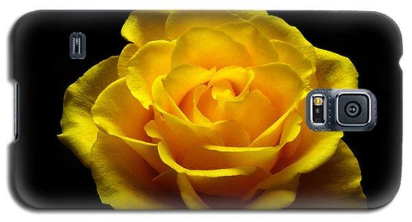 Yellow Rose 4 Galaxy S5 Case