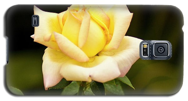 Yellow Rose Galaxy S5 Case by Bill Barber