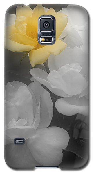 Galaxy S5 Case featuring the photograph Yellow Rose Cluster Partial Color by Smilin Eyes  Treasures