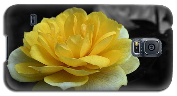 Galaxy S5 Case featuring the photograph Yellow Rose In Bloom by Smilin Eyes  Treasures