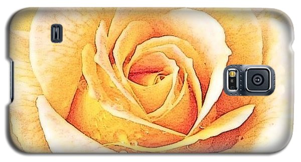 Galaxy S5 Case featuring the photograph Yellow Rose by Karen Shackles