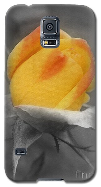 Galaxy S5 Case featuring the photograph Yellow Rosebud Partial Color by Smilin Eyes  Treasures