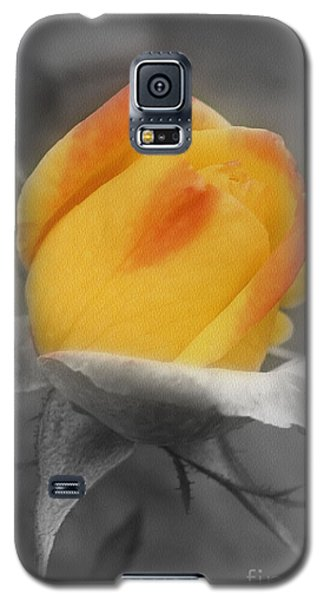 Yellow Rosebud Partial Color Galaxy S5 Case