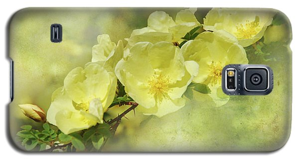 Galaxy S5 Case featuring the photograph Yellow Roses by Elaine Manley