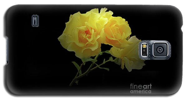 Yellow Roses On Black Galaxy S5 Case