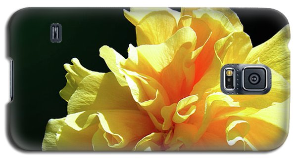 Yellow Ruffle Hibiscus Flower Galaxy S5 Case