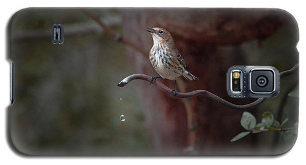 Yellow-rumped Warbler At Water Spout Galaxy S5 Case