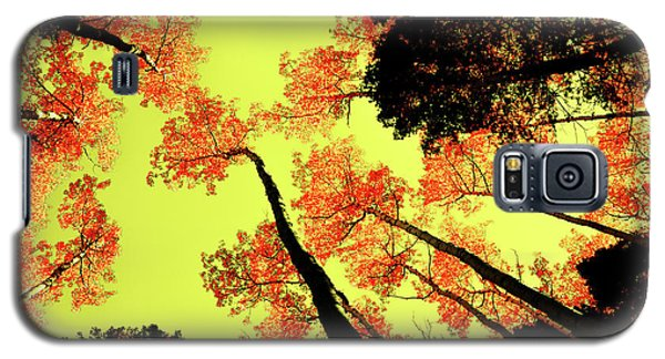 Galaxy S5 Case featuring the photograph Yellow Sky, Burning Leaves by Kevin Munro