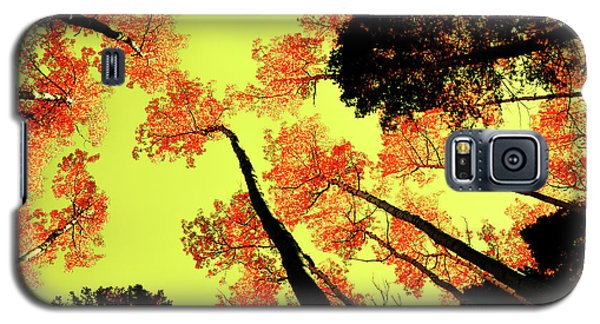 Yellow Sky, Burning Leaves Galaxy S5 Case