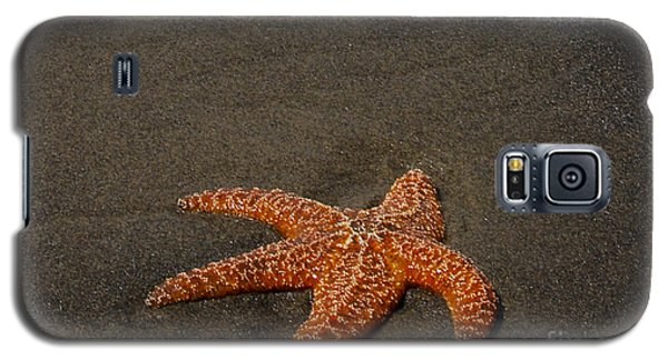 Orange Starfish On Oregon Beach Galaxy S5 Case