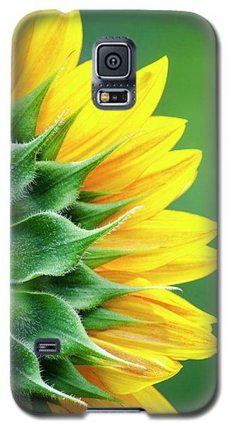 Yellow Sunflower Galaxy S5 Case