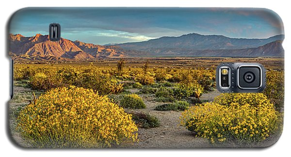 Galaxy S5 Case featuring the photograph Yellow Sunrise by Peter Tellone
