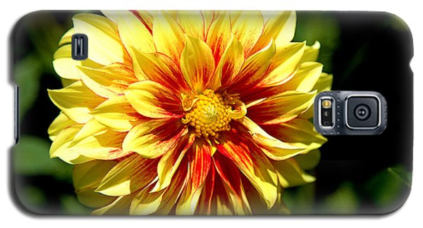 Yellow Sunshine Galaxy S5 Case
