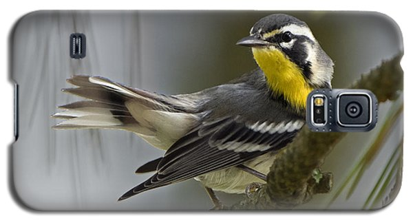 Yellow-throated Warbler Galaxy S5 Case