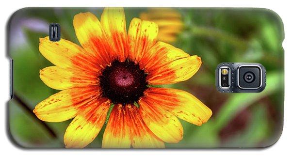 Yellow Tones Galaxy S5 Case