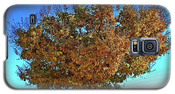 Yellow Tree Blue Sky Galaxy S5 Case