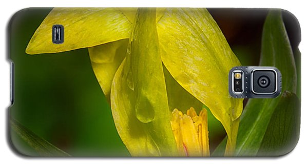 Galaxy S5 Case featuring the photograph Yellow Trillium by Tyson and Kathy Smith