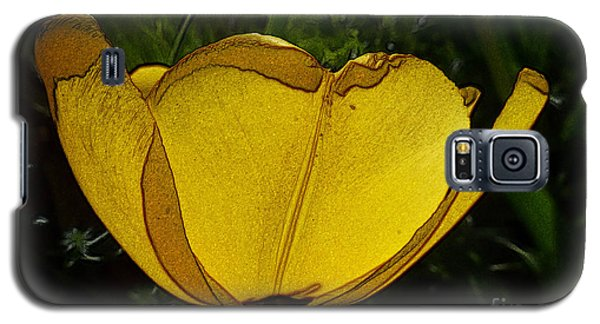 Yellow Tulip 2 Galaxy S5 Case by Jean Bernard Roussilhe
