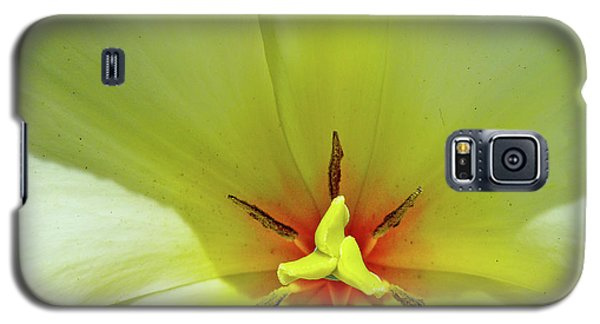 Galaxy S5 Case featuring the photograph Yellow Tulip by Susan Cole Kelly