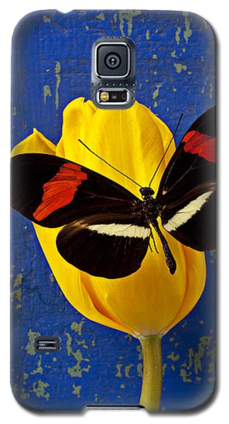 Tulip Galaxy S5 Case - Yellow Tulip With Orange And Black Butterfly by Garry Gay